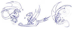Dragon Pose References for FREE