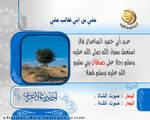 Majd channel 7 by shoair