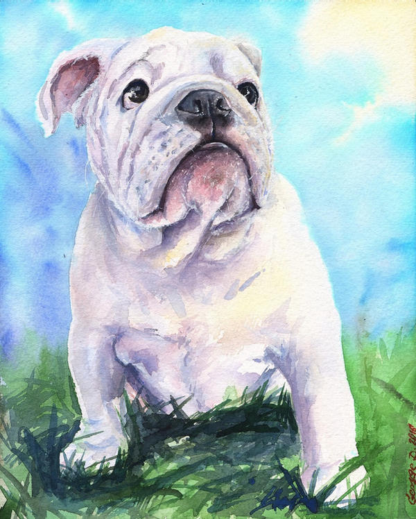 English Bulldog puppy by GeorgeArt23 on DeviantArt