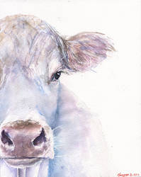 Cow portrait by GeorgeArt23