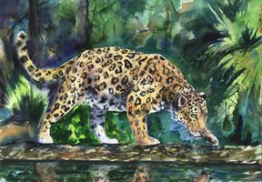 Leopard by GeorgeArt23