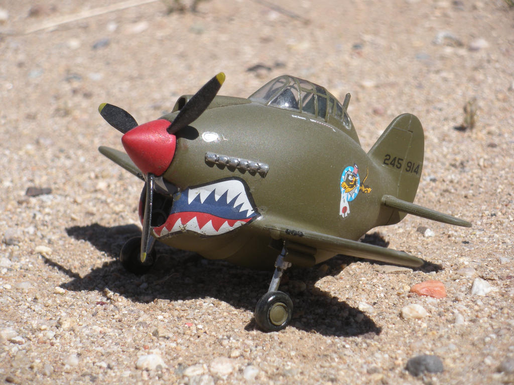 P 40 Warhawk EggPlane By DemonBa55Player