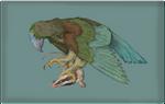 Iugulorynchus sydneii