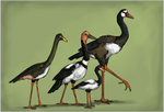 The King Geese by Sheather888