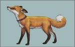 The House Fox