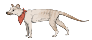 The Domesticated Thylacine by Sheather888