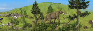 A Safari Through Time