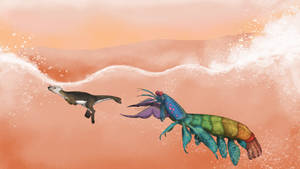 Big ol' Mantis Shrimp