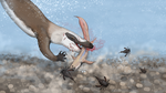 Permian Food Chain by Sheather888