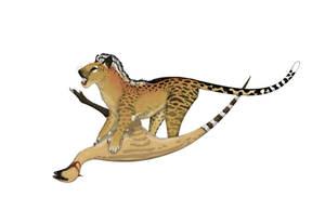 Marsupial Panther