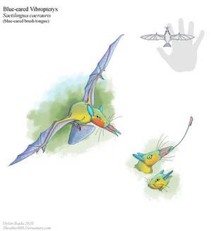 Blue-eared Vibropteryx