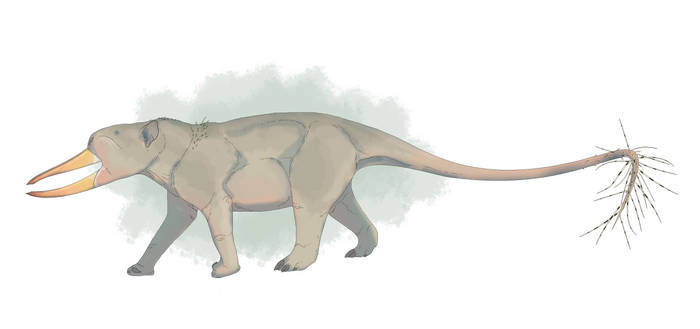 Vellicognathere