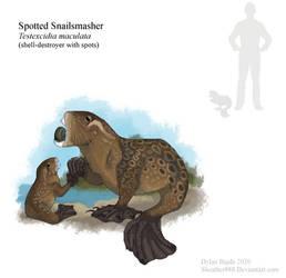 Spotted Snailsmasher