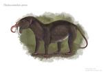 The Sabertooth Anteater