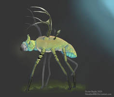 The Dragonfly Deer