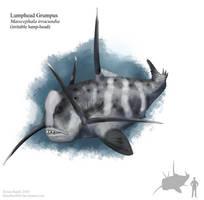 Lumphead Grumpus