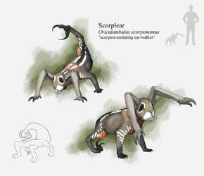 The Most Cursed Circuagodont Ever