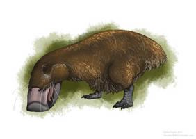 The Snuffalo