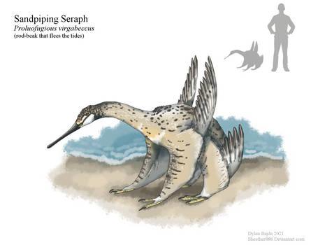 Sandpiping Seraph