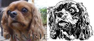 Digital Drawing of Dog