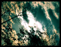 Evening Evanescence by JupiterLily