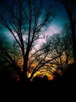 Midnight Sun by JupiterLily