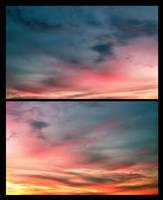 Nature's Canvas by JupiterLily
