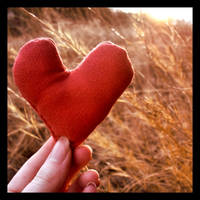 Have a Heart by JupiterLily