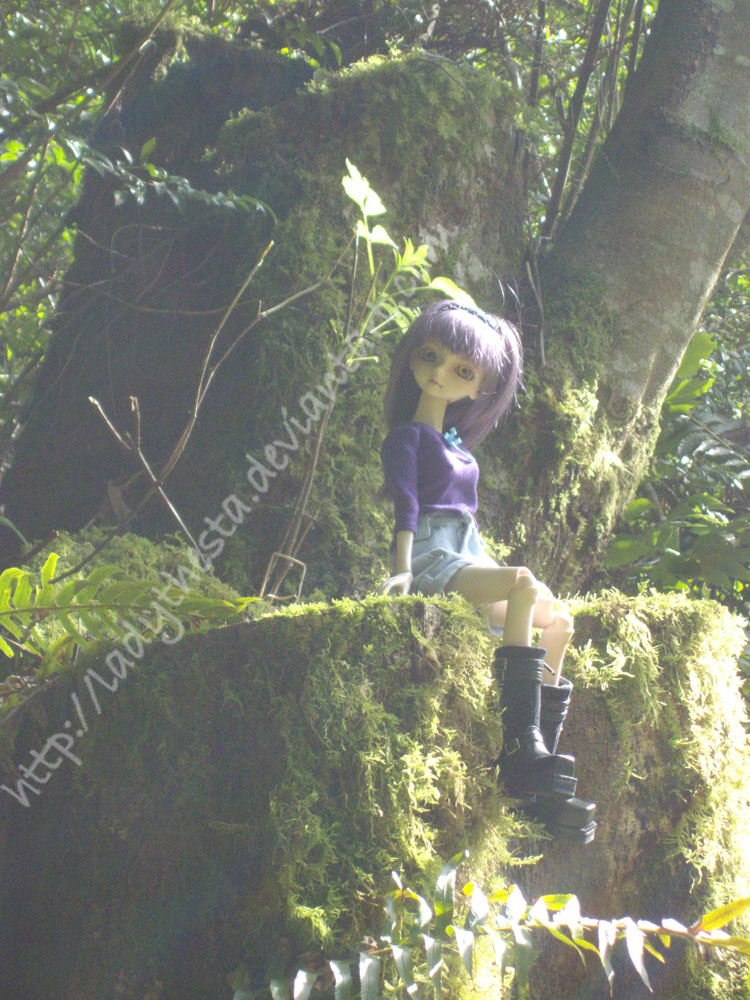 Hazy dream from the wood by ladythesta on deviantart - The hideout in the woods an artists dream ...