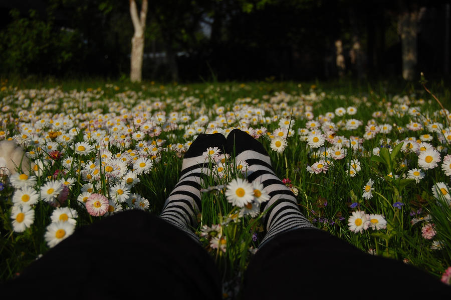 Stripes Feet and Flowers