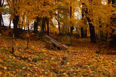 Old cemetery in Autumn 2