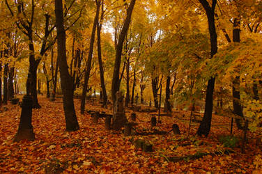 Old cemetery in Autumn 3