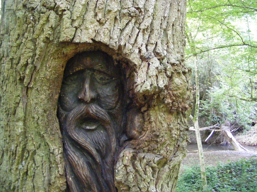 Woodwork tree wood carving pdf plans