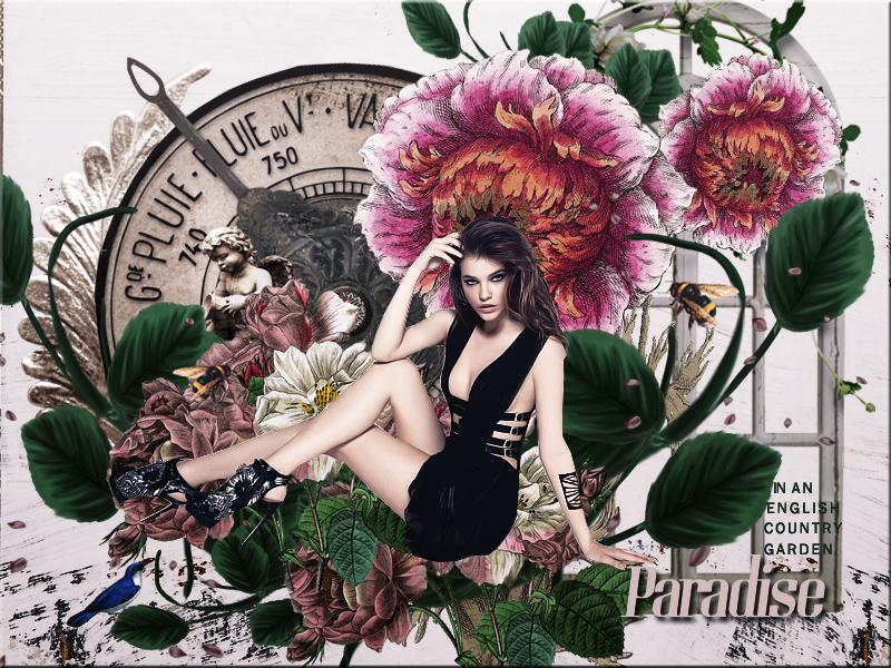 Paradise Blend by VaL-DeViAnT