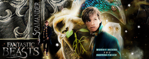 Fantastic Beasts by VaLeNtInE-DeViAnT