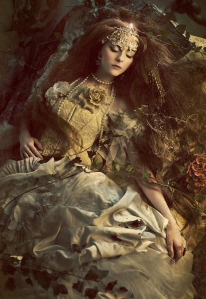 Sleeping Beauty by Widmanska