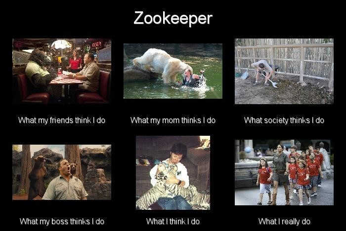 Funny Zoo Meme : Zookeeper what i really do meme by leftysmudgez on