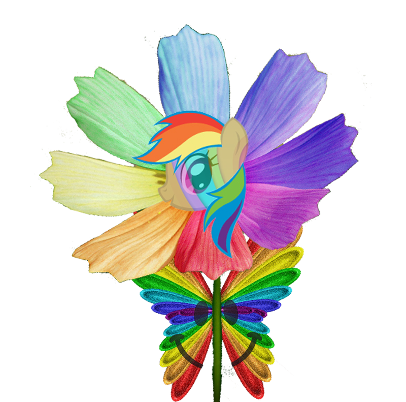 rainbow butterfly clipart transparent | Pivot Media