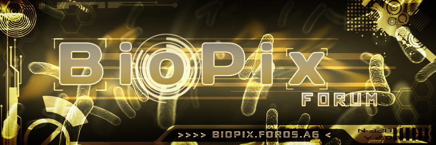 Banner contest Votaciones Biopix_prototipo_banner_by_gatodet-d4tmg66