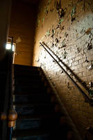 Go Into the Light by dementeddiva23