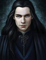 Elrond by Domerk