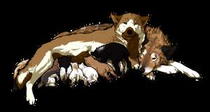 Rainbow Family by Kayxer