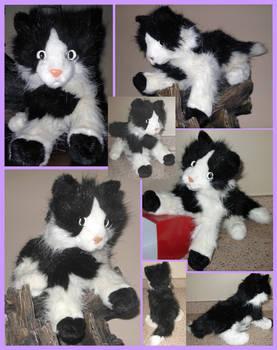 Douglas cuddle Pat  cat -sold