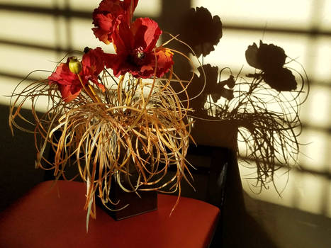 Dryed2flowers032518