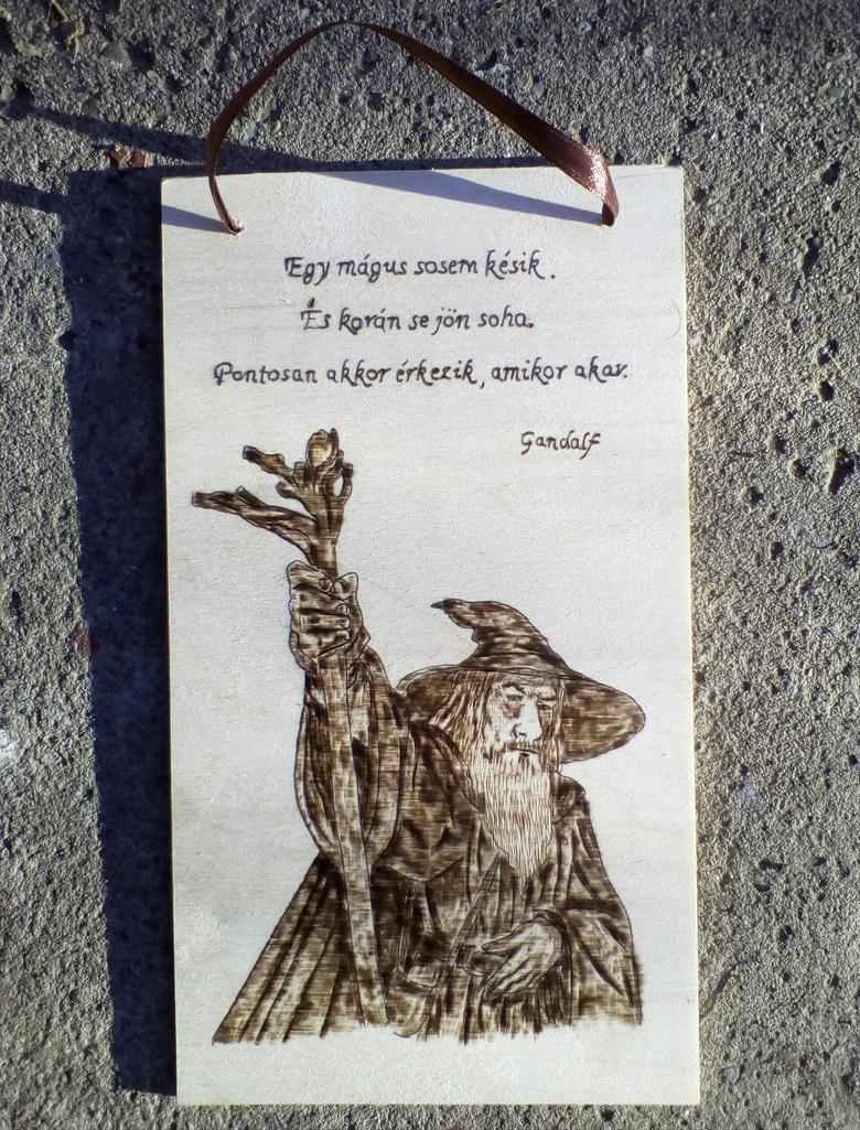 Gandalf quote by TamaraFaith