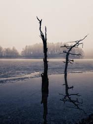 solitude II by morbus-gravis