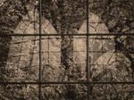 Spiegelfenster by morbus-gravis