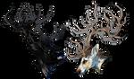 [com59] roeskull