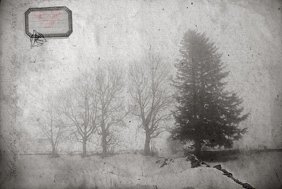 Daguerreotype test. by Azram