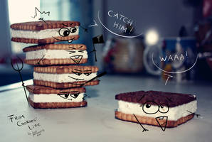 From Cookies' Life. Part 2.